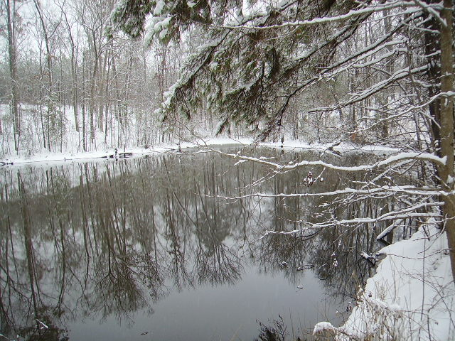 Another view of the pond
