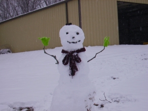 Our snowman project