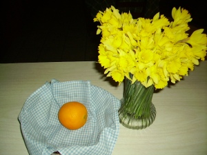 Daffodils in vase
