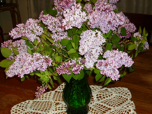Do you know the difference between lilac and wisteria? This bouquet is lilac!
