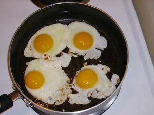 egg triage