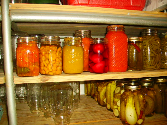 Rotel, carrots, pumpkin, tomatoes, beets, tomato soup, pickles, and green beans