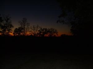 sunset seven