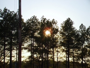 sunset on flagpole