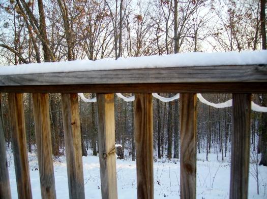 Layers of snow on webwork