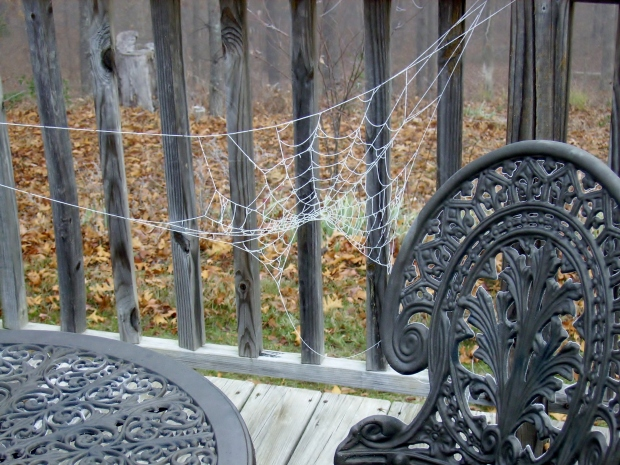 winter web works 2