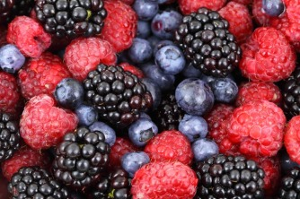 Save the berries!