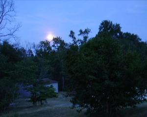 dreamy moon