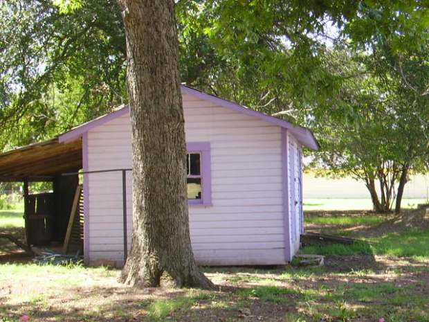 purple shed
