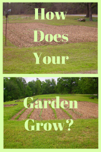 About all the changes a garden can bring. Not just appearances!