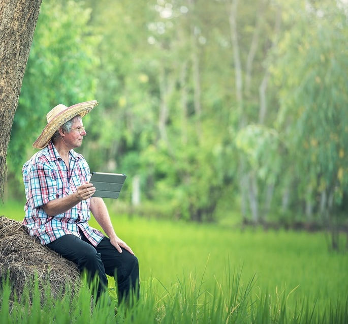 As a farmer waits for growth and ripening, so we must wait for progress in our lives.