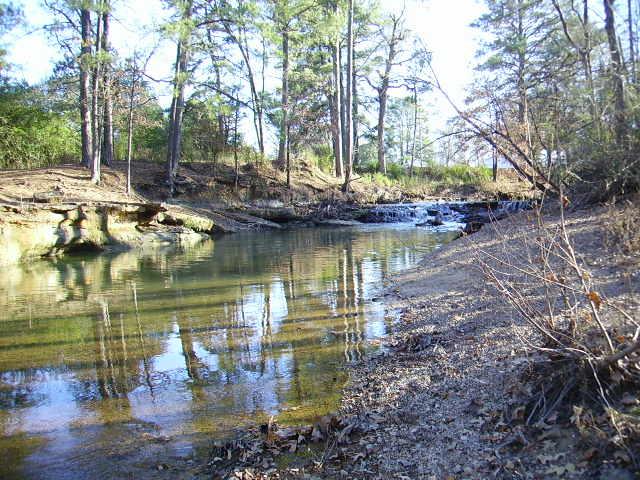 My Friend's Creek