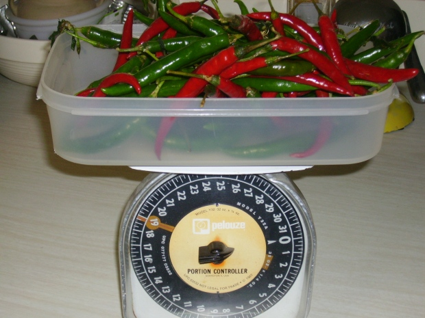 Cayenne pepper harvest