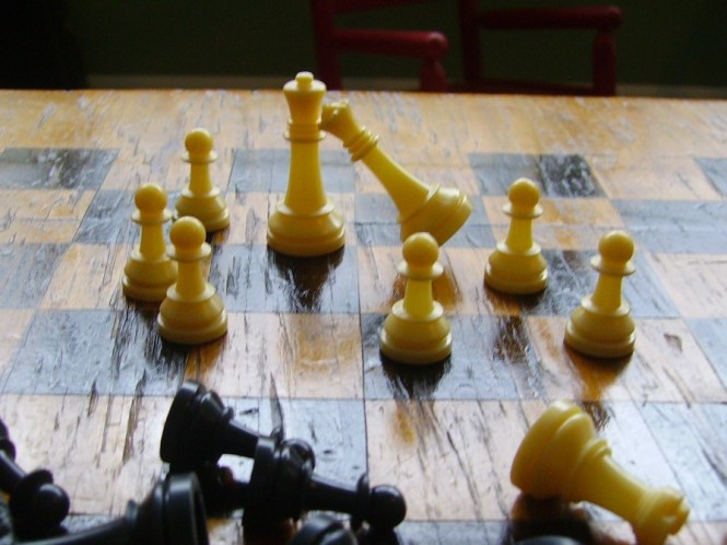 New chess pieces and board