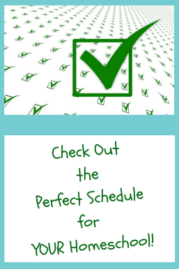 Need help making a really good schedule that works for your home/school days? Look no farther!